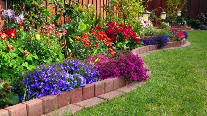 Small Garden Ideas Budget Write Teens