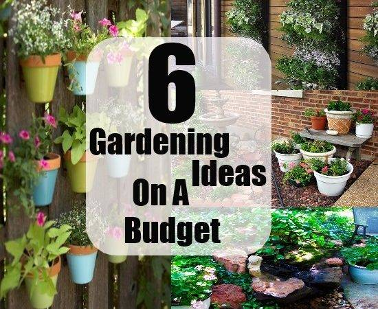 Small Gardens Ideas Budget Garden