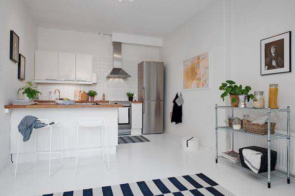 Small One Room Apartment Showcasing Ingenious Layout