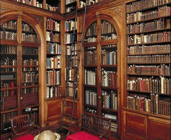 Super Ideas Your Home Library