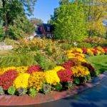 Terrific Fall Decorating Ideas Outdoor