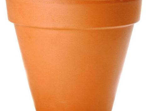 Tip Top Flower Pots Maximize Limited Space Grow Plants
