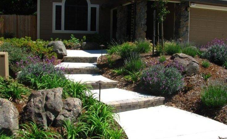 Top Best Drought Tolerant Front Yard Landscaping Ideas
