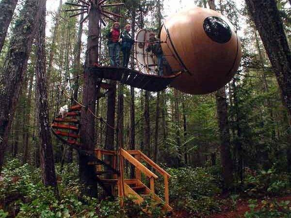 Tree Houses Most Amazing Ever