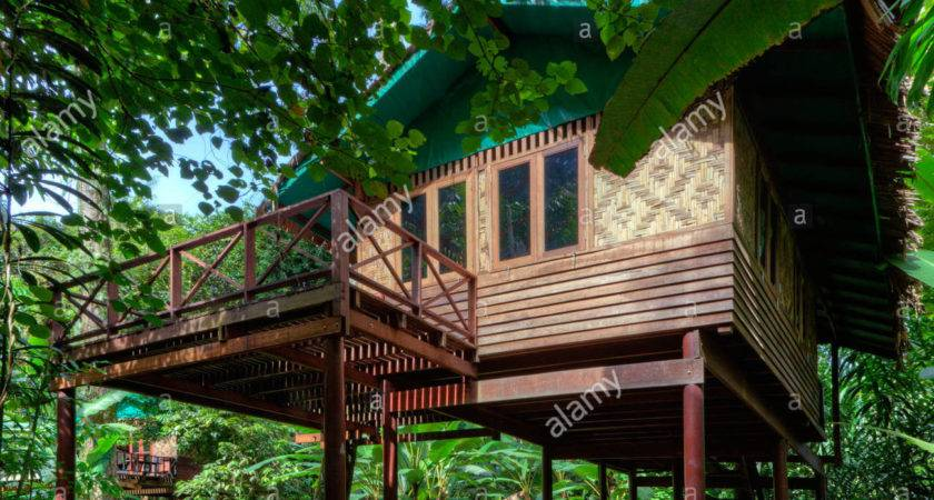 Tree Houses Specialty Our Jungle House Khao Sok