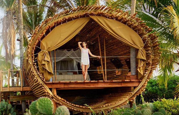 Tree Houses Stay Design Your House Its Good