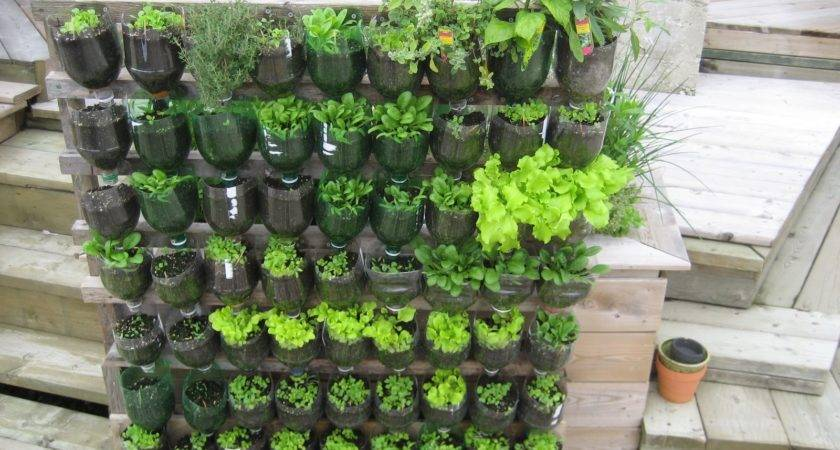 Vertical Vegetable Garden Ideas Home Design