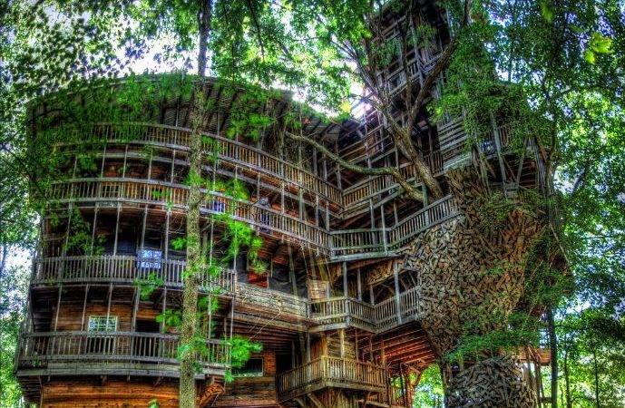 World Mysteries Best Treehouse Ever