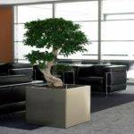 Zen Decoration Office Decorating Ideas Small